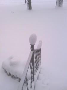 winterpicture